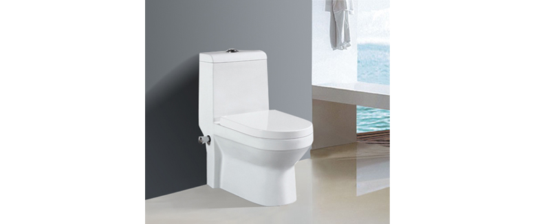 one-piece-toilet-T-M5373P